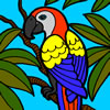 Beautiful Parrot Coloring game