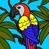 Beautiful Parrot Coloring game