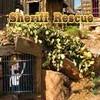 Sheriff Rescue game
