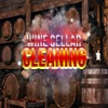 Wine Cellar Cleaning game