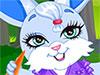 Fantasy Bunny game