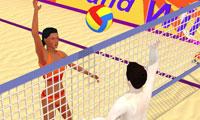 Summer Sports: Beach Volleyball game